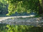 The hot weather and low water make the creek look dusty if the light is just right.