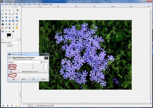 GIMPbright