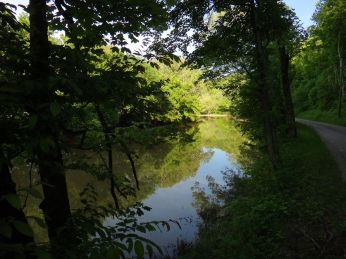 The road runs right beside Laughery Creek.