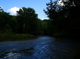 Downstream from the ford.